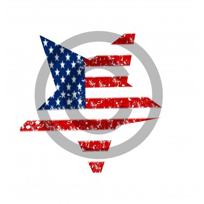5d97c59688f5c t-shirt fille manches longues USA étoile collection Design d Oc
