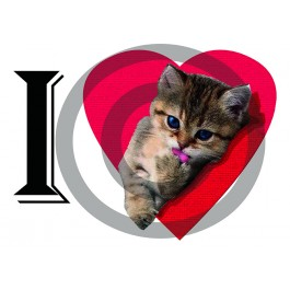 b3805310d32ad t-shirt fille chat love collection Design d Oc